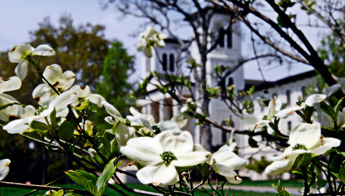 WoffordCampusSpring1